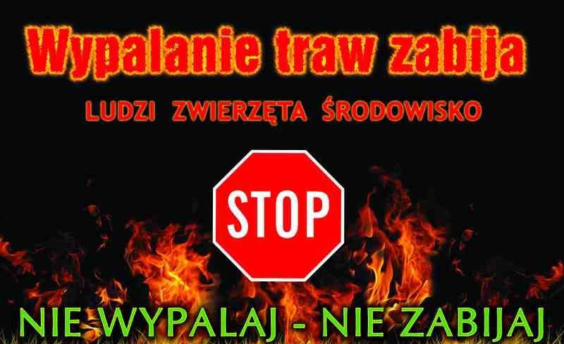 Ilustracja do informacji: Nie wypalaj traw!!!