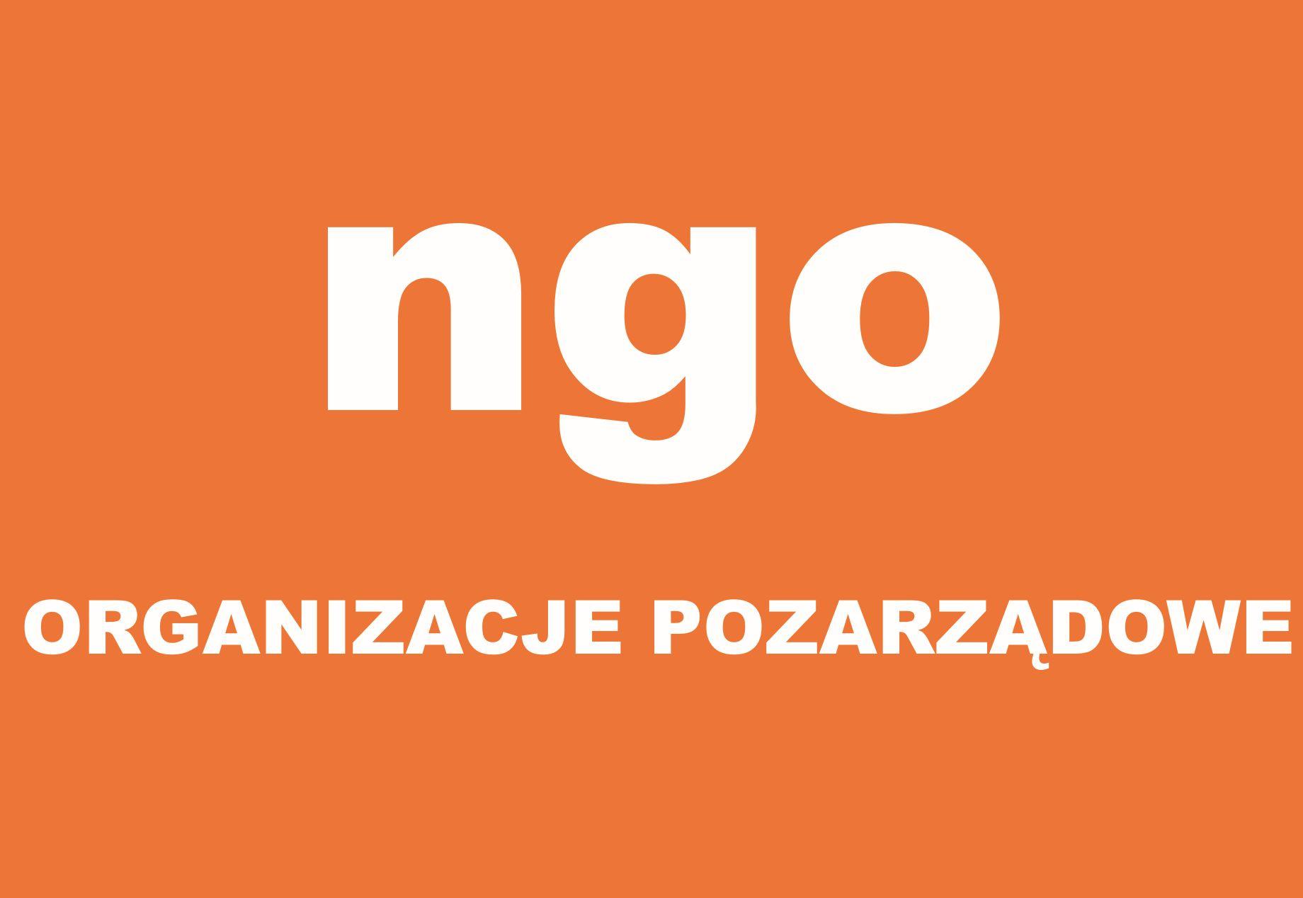 Ilustracja do informacji: Spotkanie z organizacjami pozarządowymi