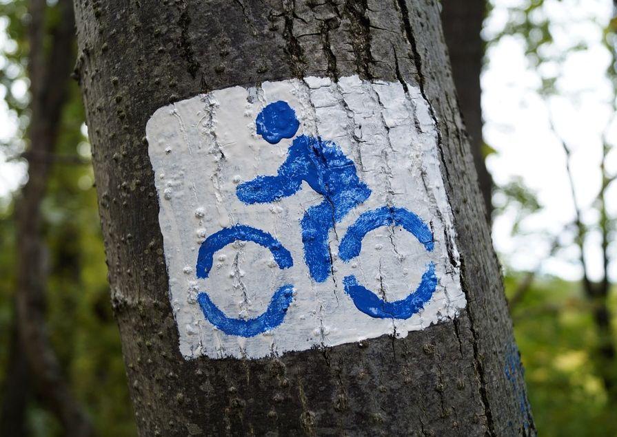 Ilustracja do informacji: Zaproszenie na spotkanie ws. ścieżek rowerowych