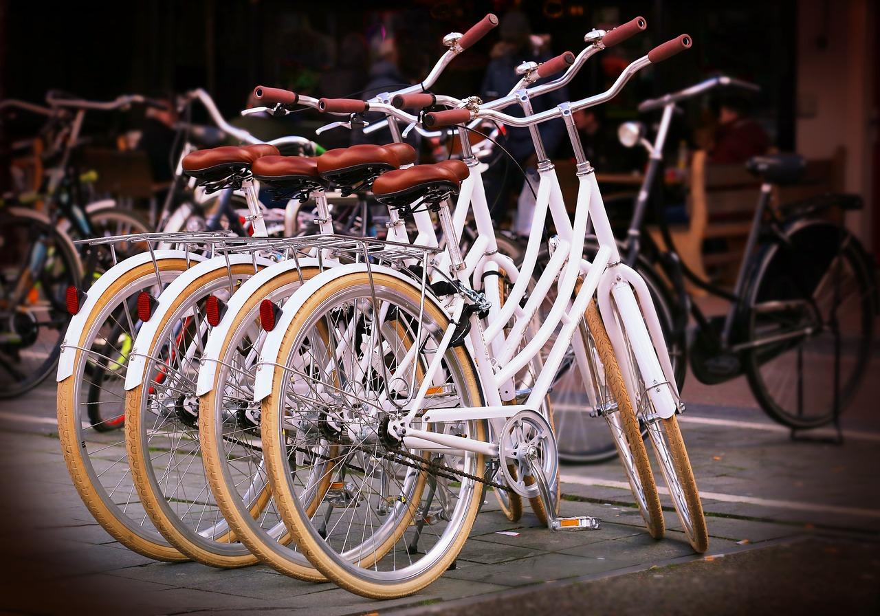 Ilustracja do informacji: Działania na rzecz rozwoju gminnej sieci rowerowej