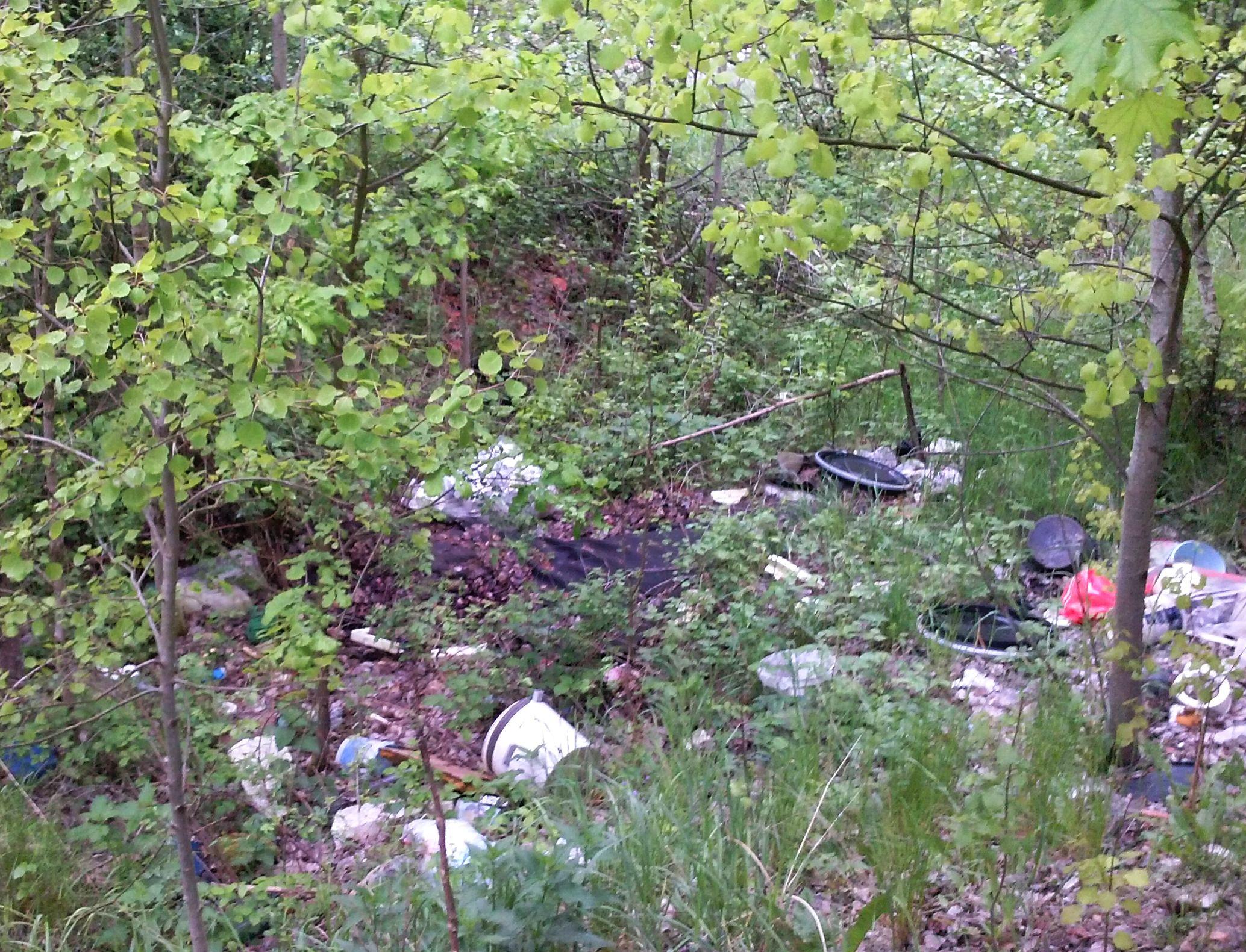 Ilustracja do informacji: Walka z dzikimi wysypiskami śmieci będzie zintensyfikowana