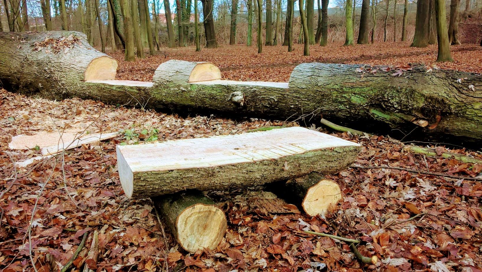 Ilustracja do informacji: Rewitalizacja Parku Huta w Iławie