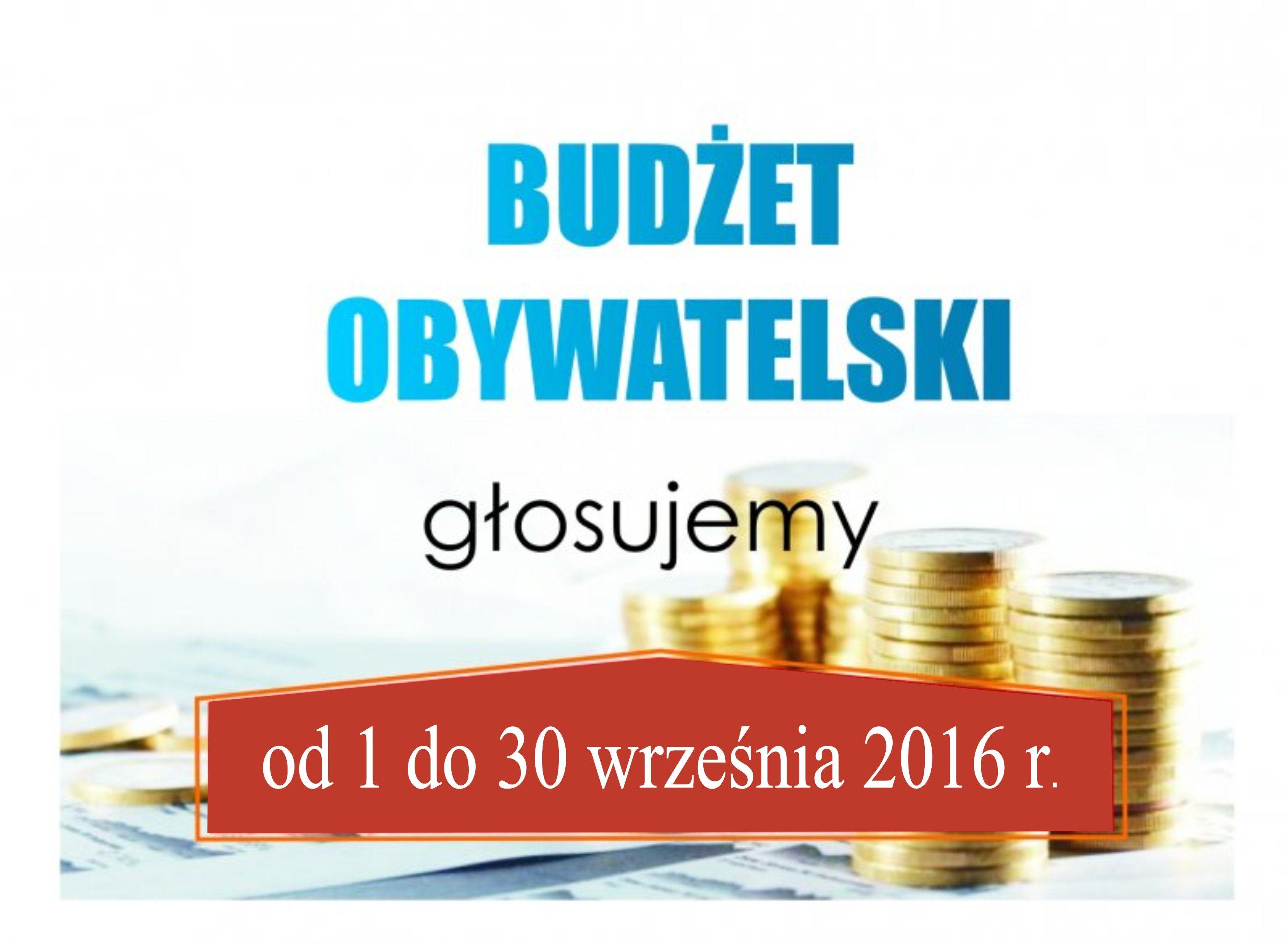 Ilustracja do informacji: Zdecyduj ostatecznie o Budżecie Obywatelskim